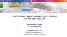 Strategic process and analytical development for AAV gene therapy